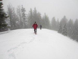le revard avant l'hiver...nage  du genoux ! dans ACTUALITE Récente IMG_0456-300x225
